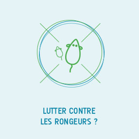 lutter rongeur