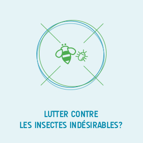 lutter insecte
